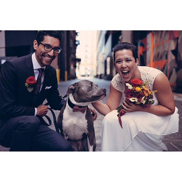 Still overjoyed at the honor of photographing Mark & Lisa's intimate wedding last month. #15yearsoffriendship #detroit #thebelt #wedding #dogswearingbowties