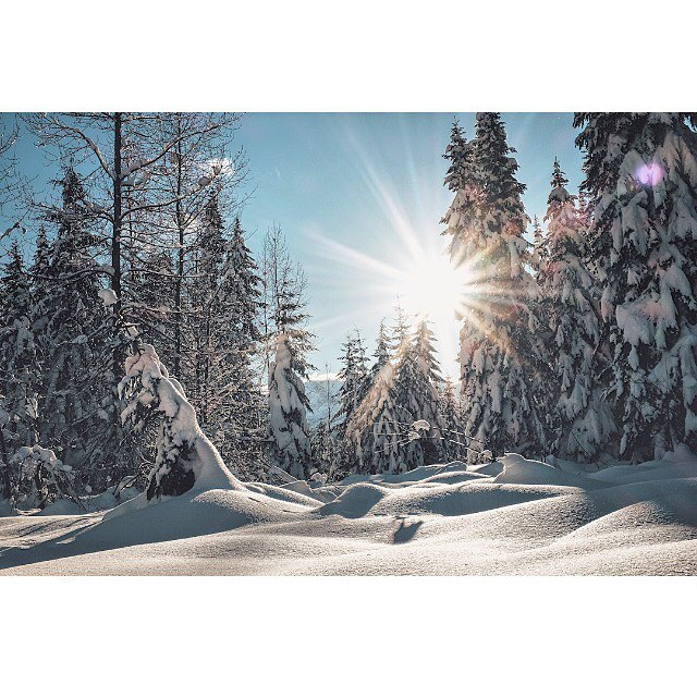 I love a sunny winter day #pnw #pnwwonderland #beautifulscenery #latergram