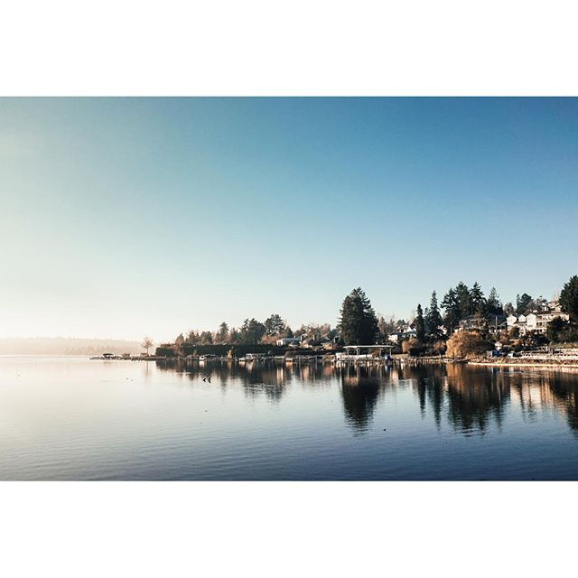 First morning of the year in the neighborhood #seattle #pnw #lakewashington #newyear