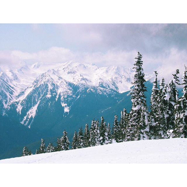 Amazing views from our snowshoe adventure last weekend #pnw #pnwlife #washingtonstate